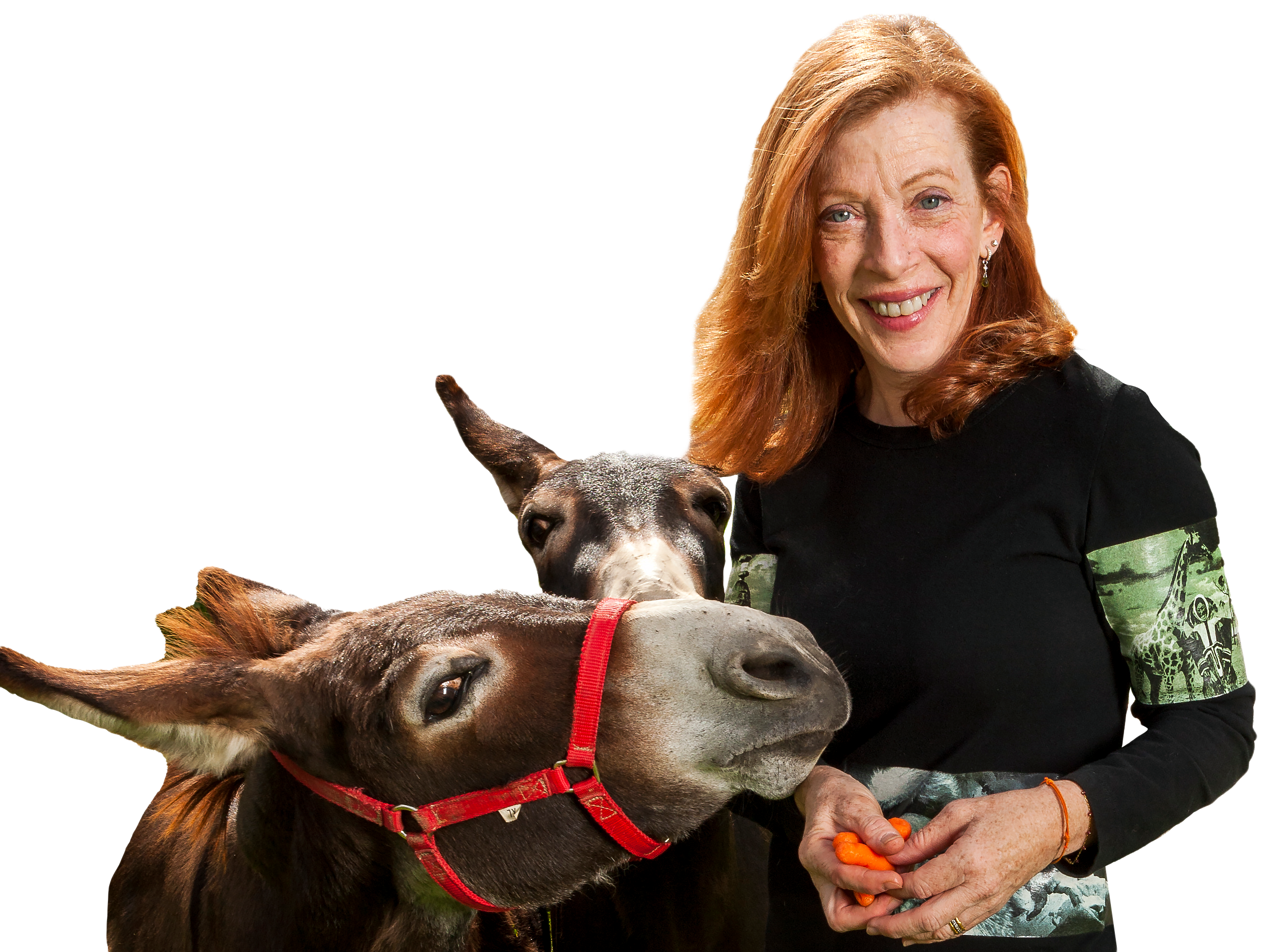 Susan Orlean's delightful essay collection 'On Animals' celebrates the finned and the furred.